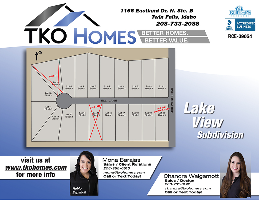 Lake View Flyer for Website